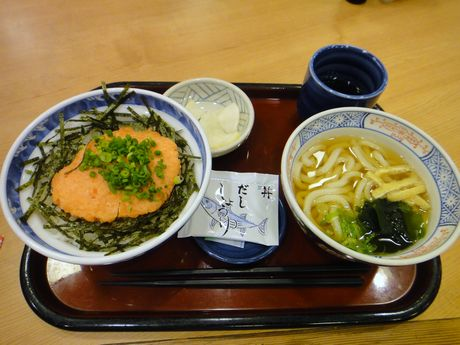 トロサーモン丼セット